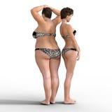 Verdünnen Sie gegen Fett in den Bikinis stock abbildung