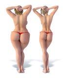 Verdünnen Sie gegen Fett von hinten Stockfotos