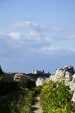 Verdala slott, Buskett Malta Arkivfoto