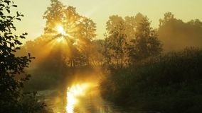 Verdampende mist over de rivier bij zonsopgang stock footage
