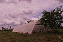 Verdampfungsgewächshaus für Wasserkulturgemüsebau Stockbild
