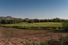 Verdant κοιλάδα - μέσος άτλαντας Μαρόκο στοκ εικόνες