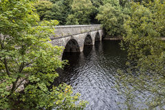 Verdant φύλλωμα κοντά στη γέφυρα που ταΐζει τη δεξαμενή Anglezarke, Στοκ φωτογραφία με δικαίωμα ελεύθερης χρήσης
