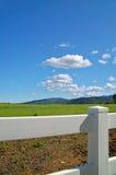 Verdant de lentelandschap Stock Fotografie