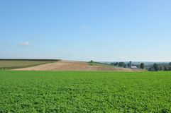 Amish Farmland Royalty Free Stock Images
