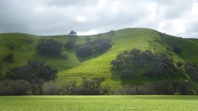 Verdant green hillsides along a canyon road in California. Rain soaked green hillsides show splashes of bright green as a few sun rays break through clouds to stock photography