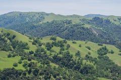 Verdant Hills. Beautiful lush hills, at Sunol Regional Wilderness Park Stock Image