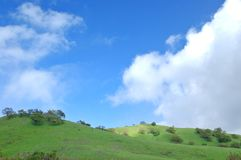 Verdant hillside Royalty Free Stock Photo