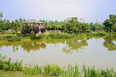 Verdant lake before fenced house in sunny summer Royalty Free Stock Photos