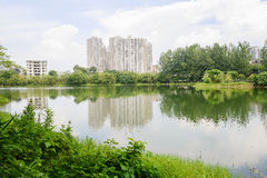 Verdant lakeshore in modern city on sunny summer day Stock Photos