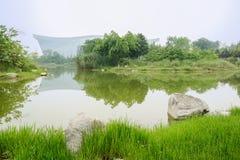 Verdant lakeshore in sunny summer Stock Photo