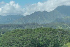 Verdant Land. A view of the Mount Waialeale mountain range, on a cloudy day, with beautiful lush jungle in the foreground, on Kauai Royalty Free Stock Images