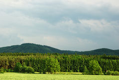 Verdant landscape. Shiny verdant landscape in spring period Stock Photos