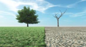 Verdant landscape or dry landscape Royalty Free Stock Images