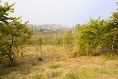 Verdant mountainside near city in sunny spring Stock Photo