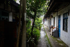 Verdant narrow alley between dilapidated houses Stock Photos