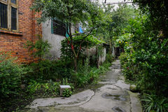 Verdant path outside aged red-brick dwelling building Royalty Free Stock Photos
