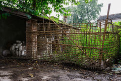 Verdant plants in bamboo fence of dilapidated roadside farmhouse Stock Photo