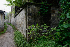 Verdant plants outside aged brick enclosure at entrance of alley Stock Photos