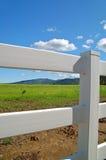 Verdant spring landscape Stock Images