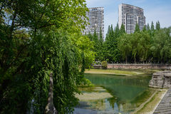 Verdant spring at riversides in modern city Stock Photo