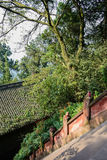 Verdant trees and plants by steep steps before ancient Chinese b Royalty Free Stock Images