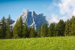 Verde 01 da montanha Fotos de Stock