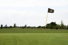 Verde 03 do golfe Imagem de Stock