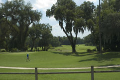 Verde 2 del golf Fotos de archivo