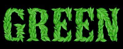 Verde Immagini Stock Libere da Diritti