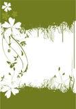 Verde Immagini Stock