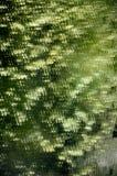 Verde abstracto reflejado en la cascada del espejo Imagen de archivo