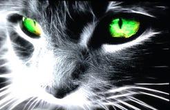Verde afortunado Imagem de Stock
