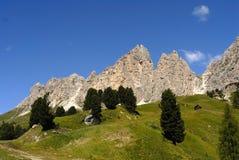 Verde alpino, paisagem do verão foto de stock