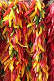 Verde amarillo rojo Chili Pepper Ristras Hanging Imagen de archivo libre de regalías