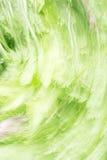 Verde astratto del fondo Immagini Stock Libere da Diritti