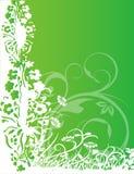 Verde astratto della sorgente del fiore dell'illustrazione del fiore Immagine Stock