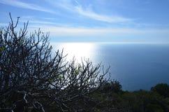 Verde azul de Portugal del océano del verano azul del agua Imagen de archivo