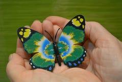 Verde butterfy nas mãos em um fundo verde Imagens de Stock Royalty Free