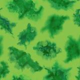 Verde claro salpica el modelo Imagenes de archivo