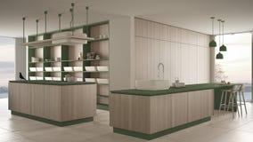 Verde costoso di lusso minimalista e fresa di legno della cucina, dell'isola, del lavandino e del gas, spazio aperto, finestra pa royalty illustrazione gratis