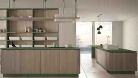 Verde costoso di lusso minimalista e fresa di legno della cucina, dell'isola, del lavandino e del gas, spazio aperto, finestra pa illustrazione di stock
