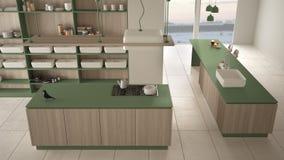Verde costoso di lusso minimalista e fresa di legno della cucina, dell'isola, del lavandino e del gas, spazio aperto, pavimento c illustrazione vettoriale