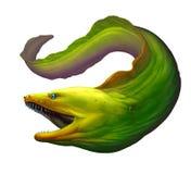 Verde da enguia de Moray Grande enguia de moray verde com mouthÑŽ aberto ilustração do vetor