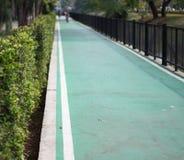 Verde da maneira do trajeto no jardim Imagem de Stock Royalty Free
