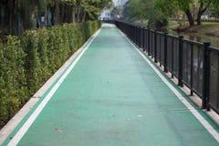 Verde da maneira do trajeto no jardim Imagens de Stock Royalty Free
