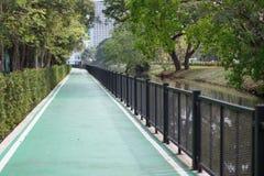 Verde da maneira do trajeto no jardim Foto de Stock