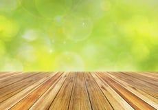 Verde da mola e fundo da luz solar do bokeh Imagens de Stock Royalty Free