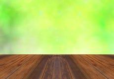 Verde da mola e fundo da luz solar do bokeh Fotos de Stock Royalty Free