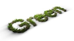 Verde da palavra datilografado por flores e por grama Imagem de Stock Royalty Free